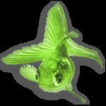 greenfixh icon editor pro gratis bildbehandlingsprogram